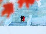 赏冰雕的情侣